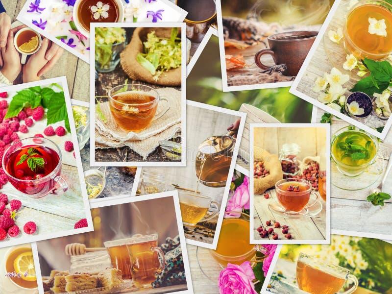 Collage de thé Foyer sélectif photo libre de droits