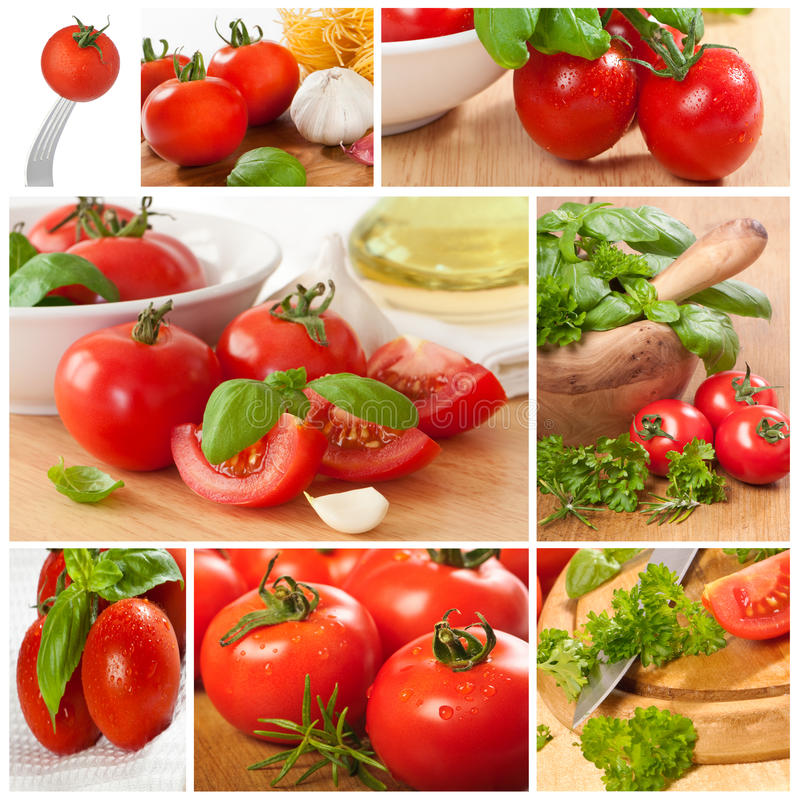 Collage de tomate images stock