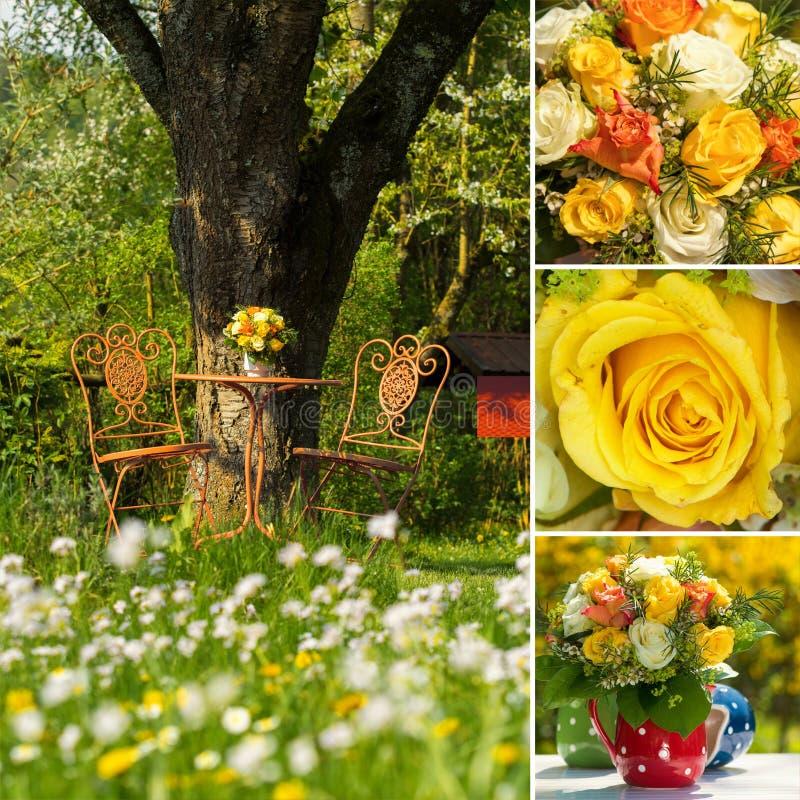 Collage de trois images de bouquet de roses image stock