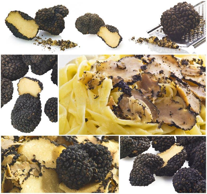 Collage de truffes images libres de droits