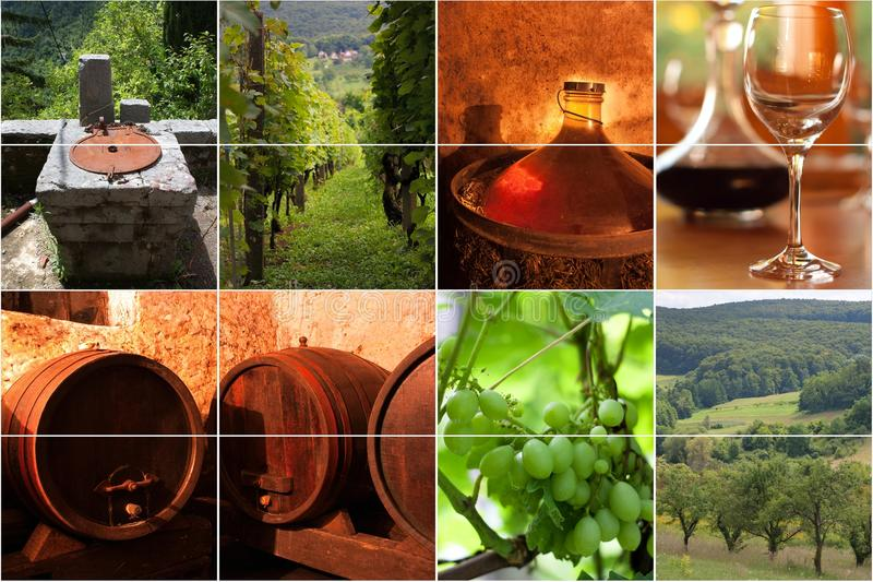 Collage de vin photo libre de droits