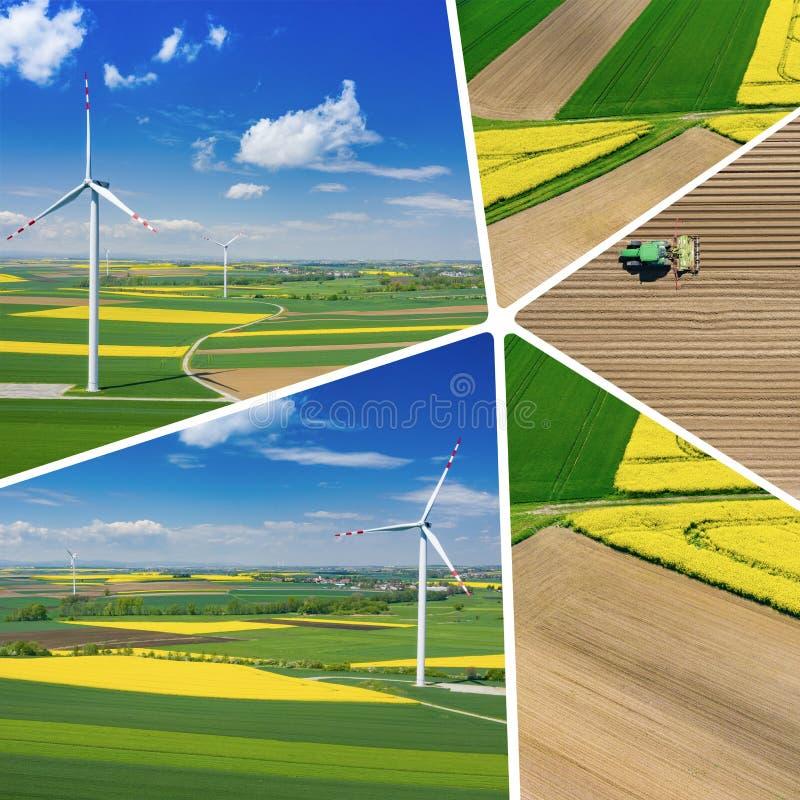 Collage de vue aérienne de turbine de vent Floraison de graine de colza Moulins ? vent et champs jaunes d'en haut Champs agricole photographie stock libre de droits