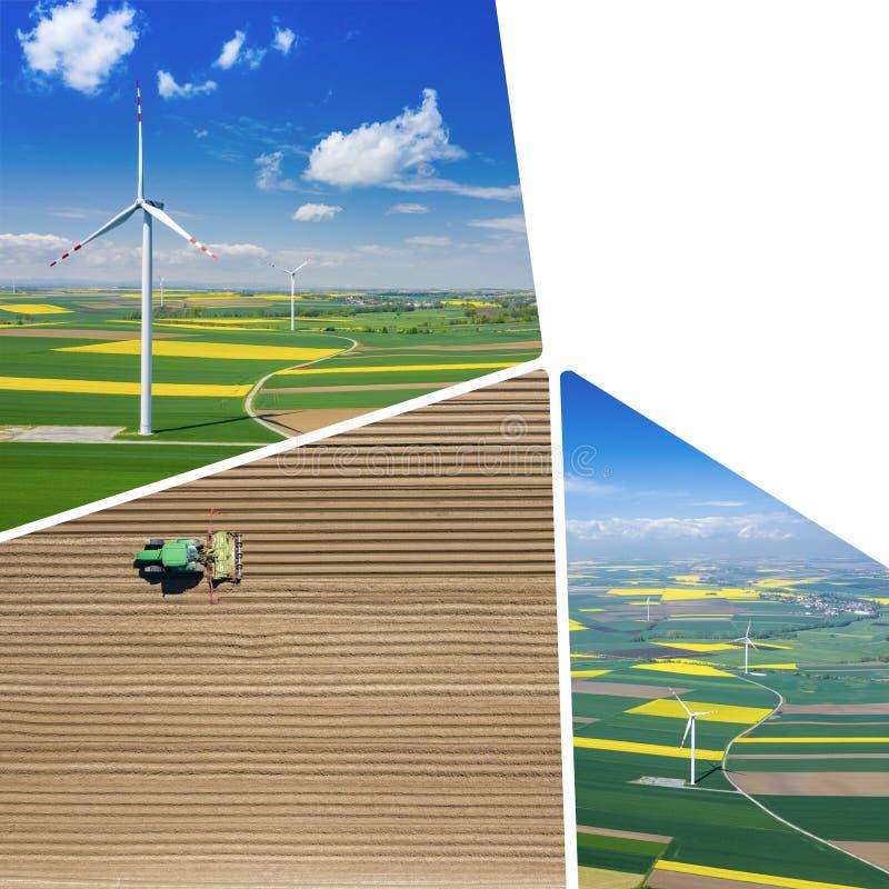 Collage de vue aérienne de turbine de vent Floraison de graine de colza Moulins ? vent et champs jaunes d'en haut Champs agricole photo stock