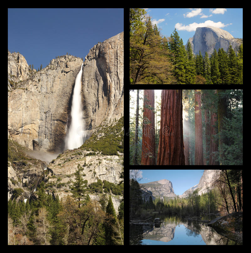 Collage de Yosemite photos stock