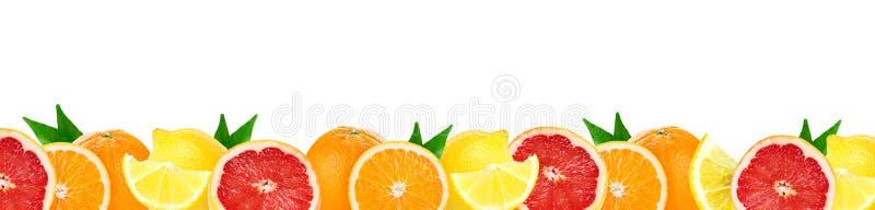 Collage degli agrumi misti Frutti freschi di colore fotografia stock libera da diritti