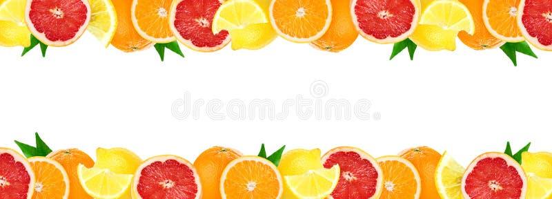 Collage degli agrumi misti Frutti freschi di colore fotografia stock