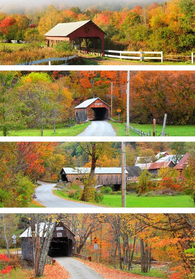Collage dei ponti coperti della Nuova Inghilterra fotografia stock libera da diritti