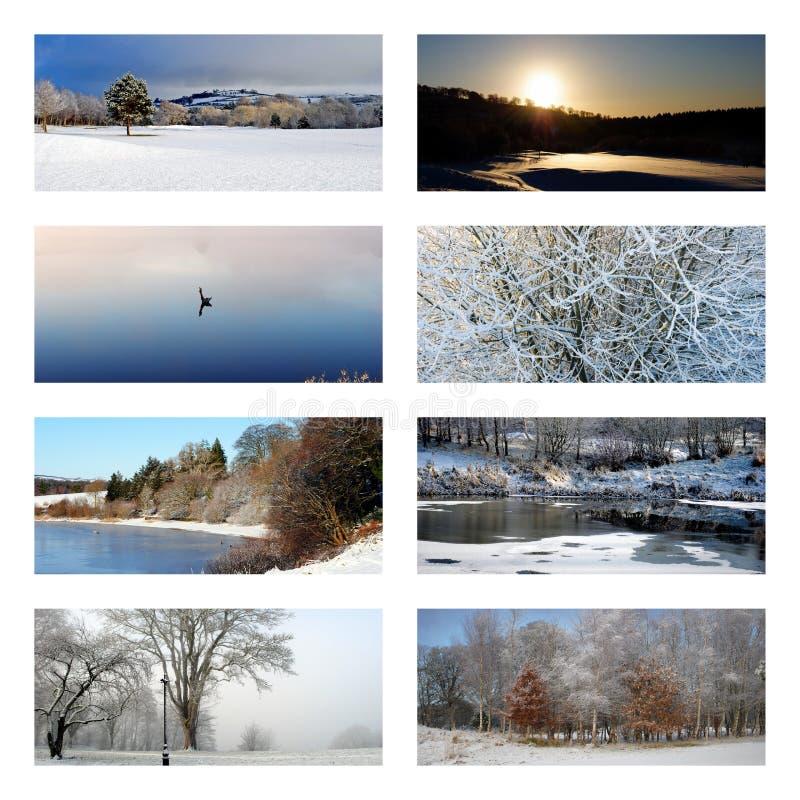 Collage del invierno imagen de archivo libre de regalías