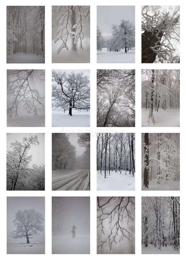 Collage del invierno imagenes de archivo