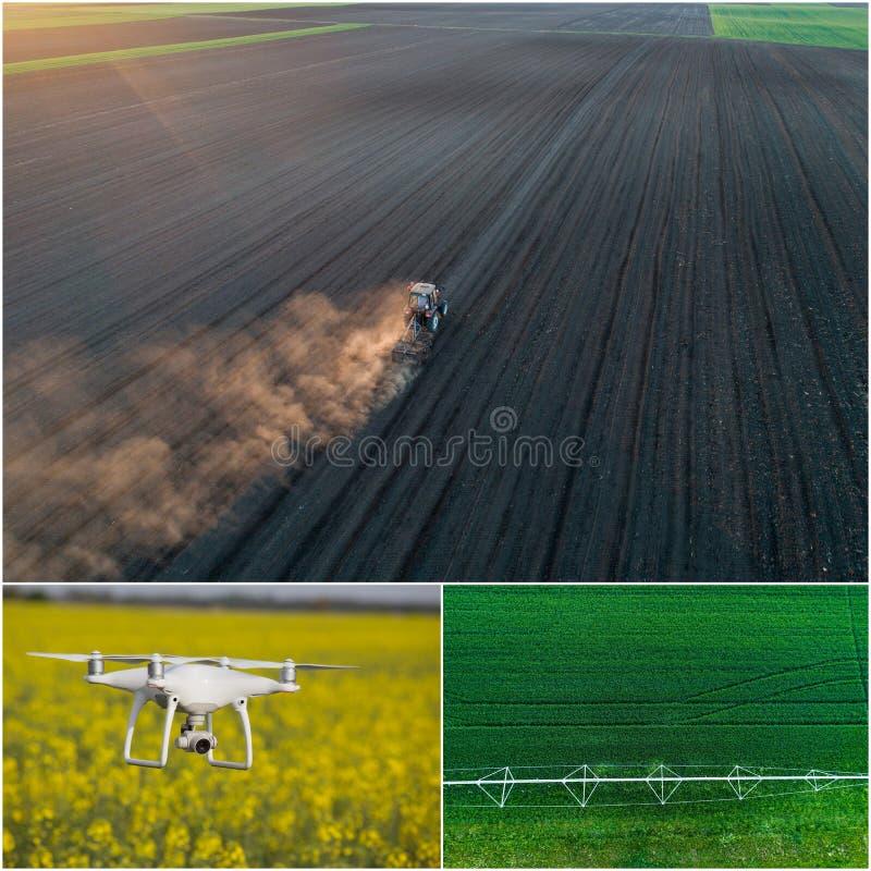 Collage del lanzamiento de los trabajos agrícolas del abejón fotografía de archivo