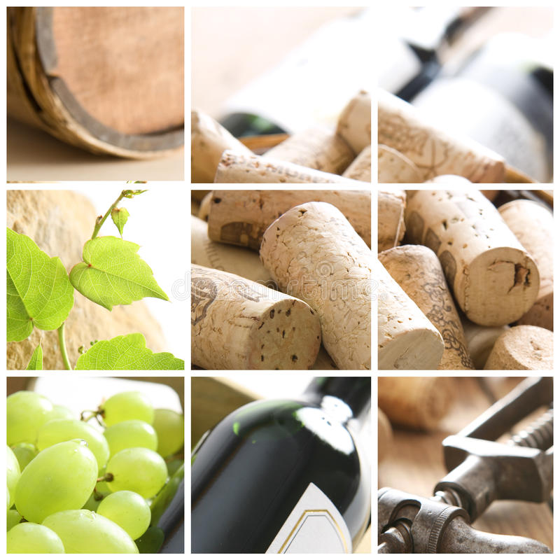 Collage del vino fotografia stock