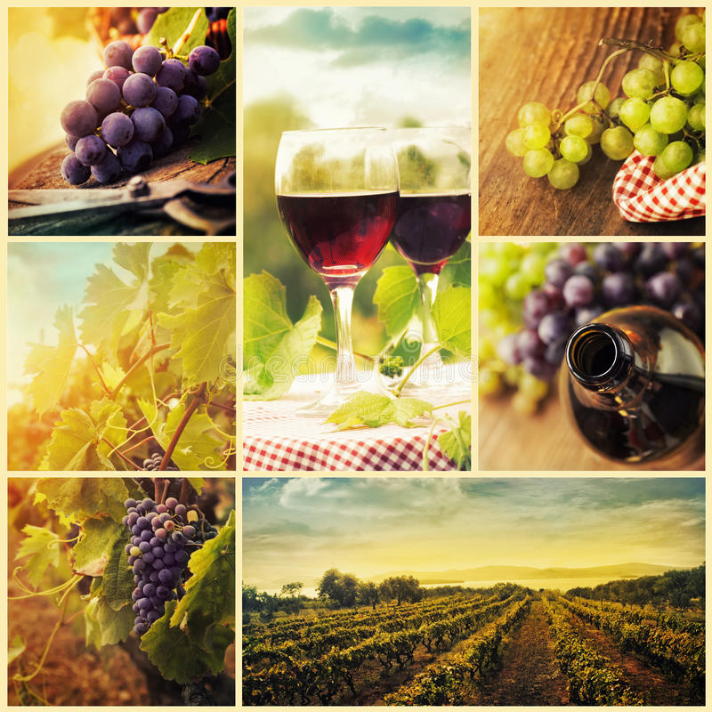 Collage del vino del país fotos de archivo libres de regalías