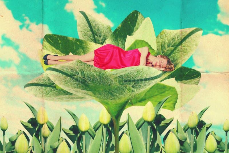 Collage del vintage del arte con la mujer hermosa stock de ilustración