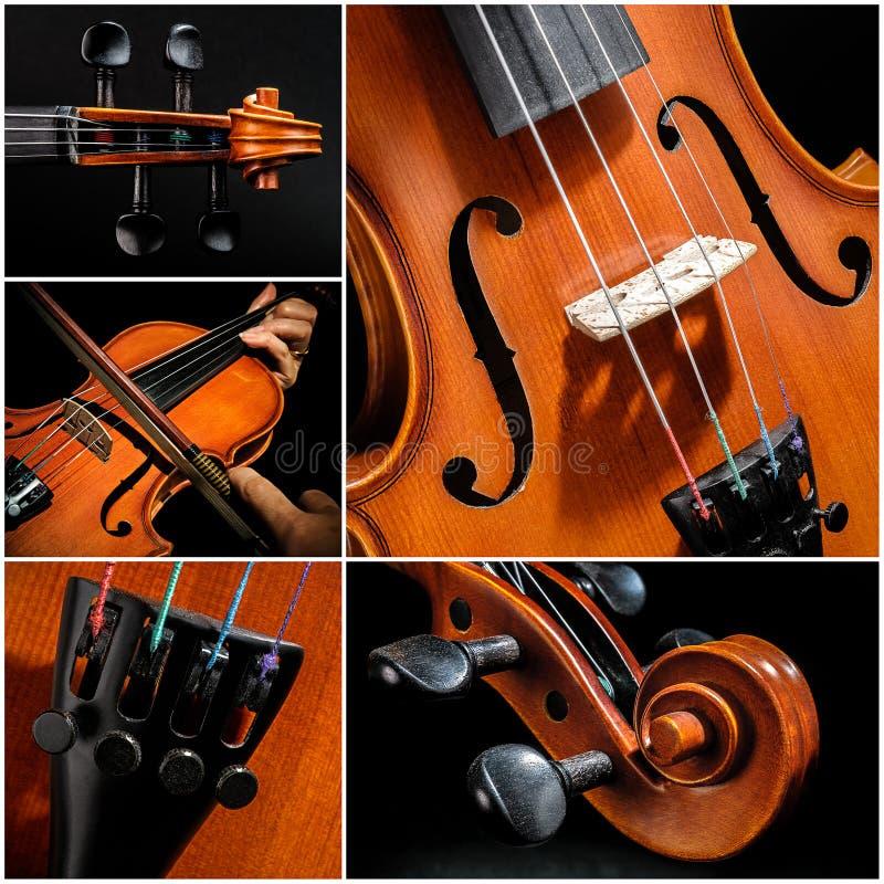 Collage del violín fotos de archivo