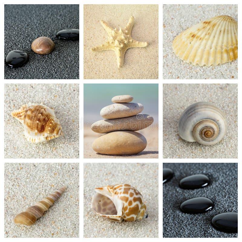 Collage della foto di tema del mare composto di immagini differenti immagini stock libere da diritti