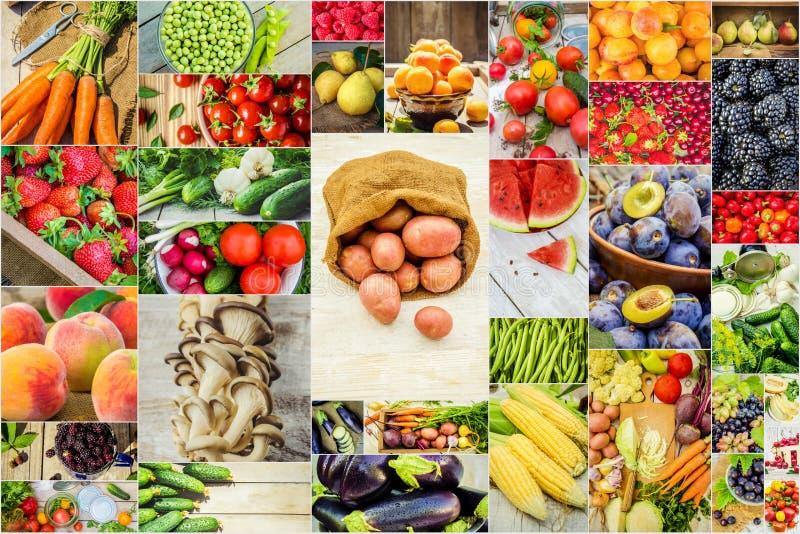 Collage della frutta e delle verdure in una foto immagine stock libera da diritti