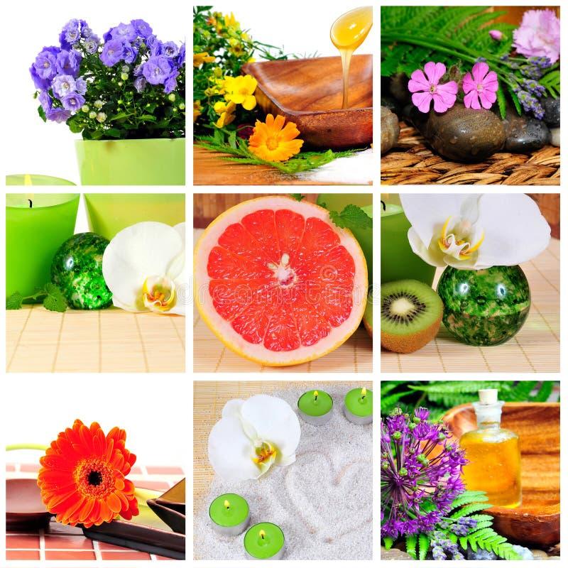 Collage della stazione termale di Wellness immagine stock