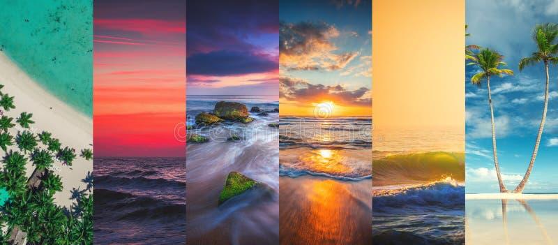 Collage delle immagini del mare e della spiaggia di estate - backg di viaggio e della natura fotografia stock libera da diritti