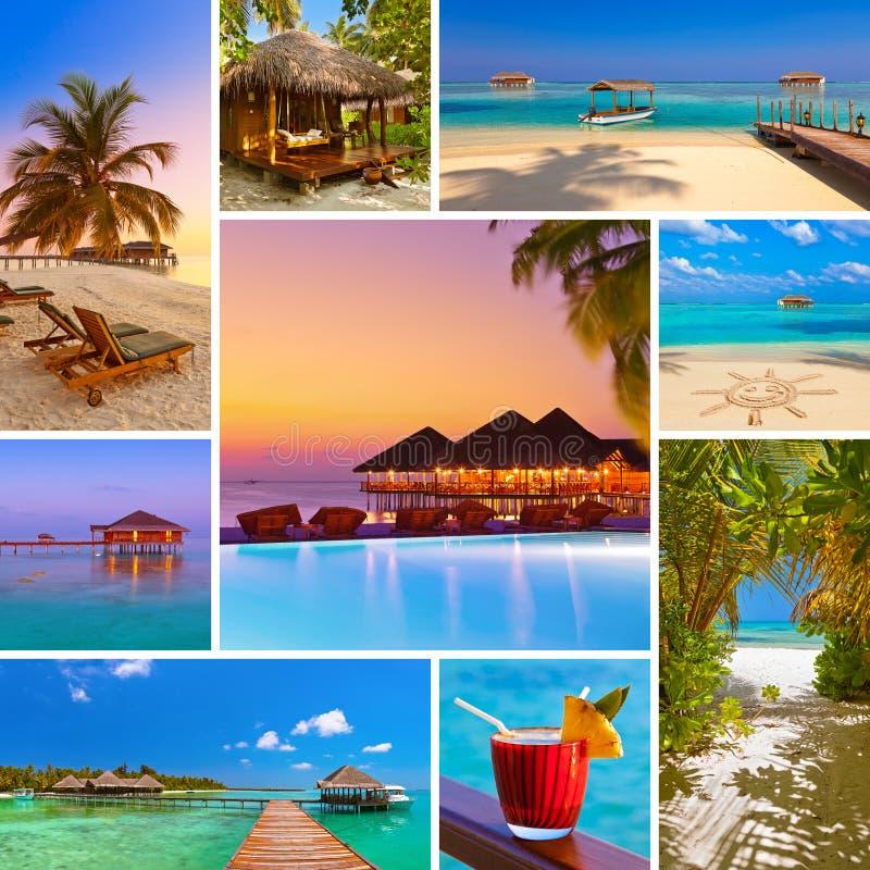 Collage delle immagini della spiaggia delle Maldive le mie foto immagine stock libera da diritti