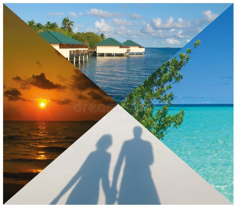 Collage delle immagini delle Maldive della spiaggia di estate - fondo di viaggio e della natura immagine stock libera da diritti