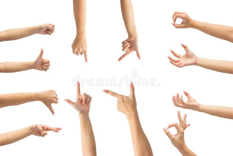 Collage delle mani della donna sugli ambiti di provenienza bianchi fotografie stock libere da diritti