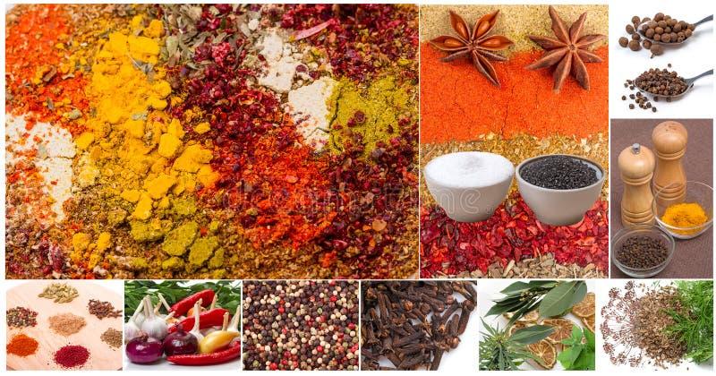 Collage delle spezie e dei condimenti immagine stock libera da diritti