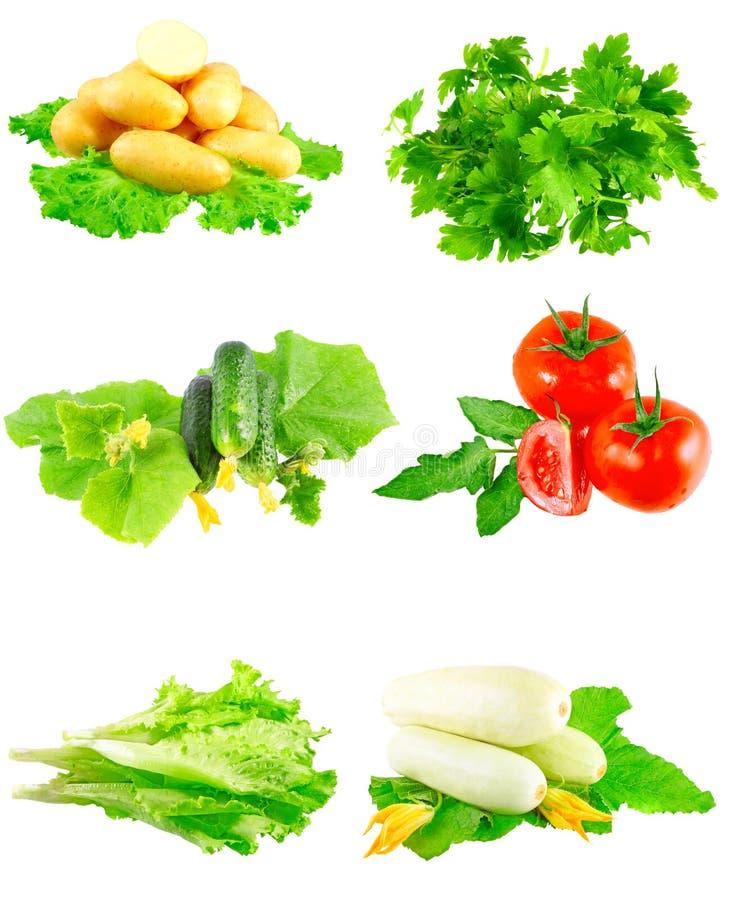 Collage delle verdure su priorità bassa bianca. fotografia stock