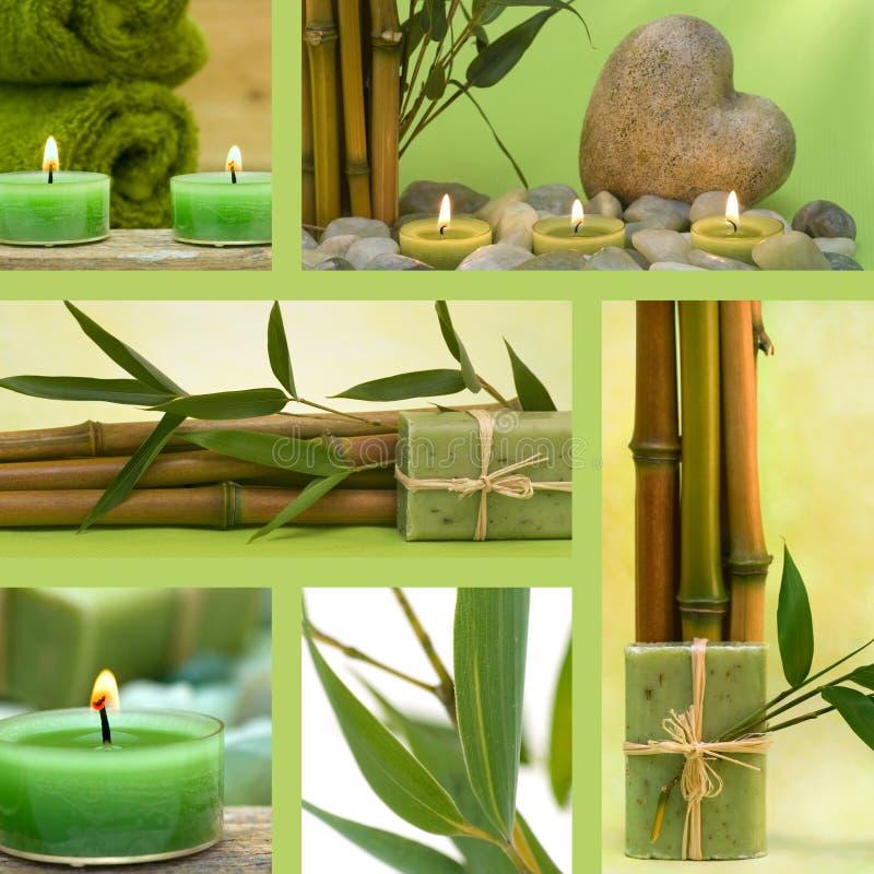 Collage der grünen Wellneßmotive stockbild