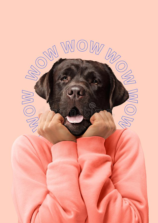 Collage der zeitgenössischen Kunst oder Porträt der überraschten Hund vorangegangenen Frau Modernes Artpop-art zine Kulturkonzept lizenzfreie stockfotos