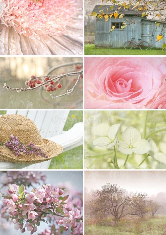 Collage des images saisonnières avec le regard de cru images stock
