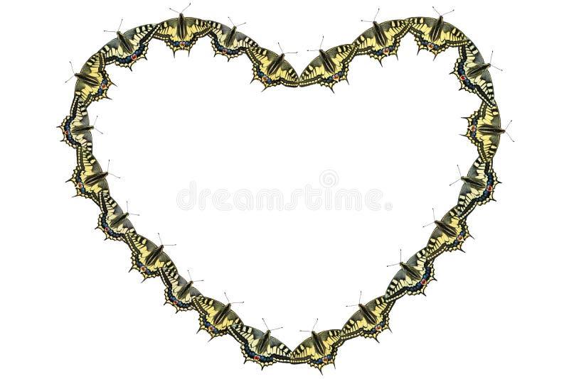Collage des papillons par Saint-Valentin de St image libre de droits
