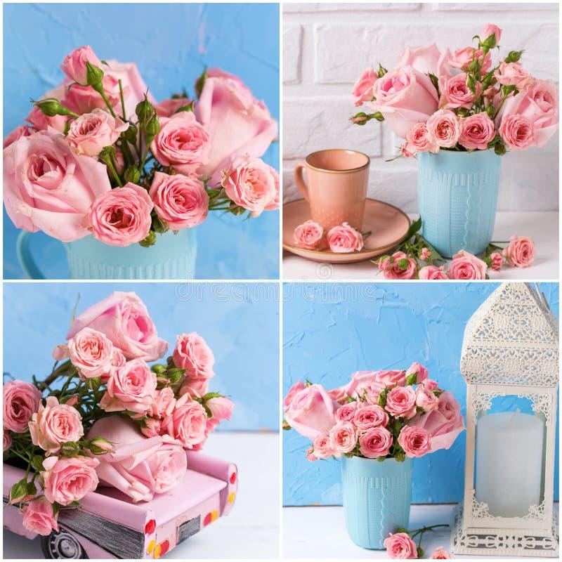 Collage des photos avec de belles fleurs roses de roses sur le fond blanc et bleu image libre de droits