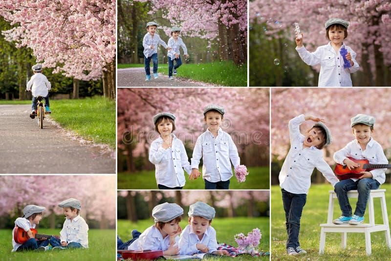 Collage des photos de deux garçons caucasiens adorables dans une floraison photographie stock libre de droits