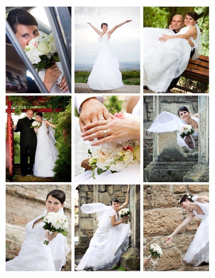 Collage des photos de mariage photos libres de droits
