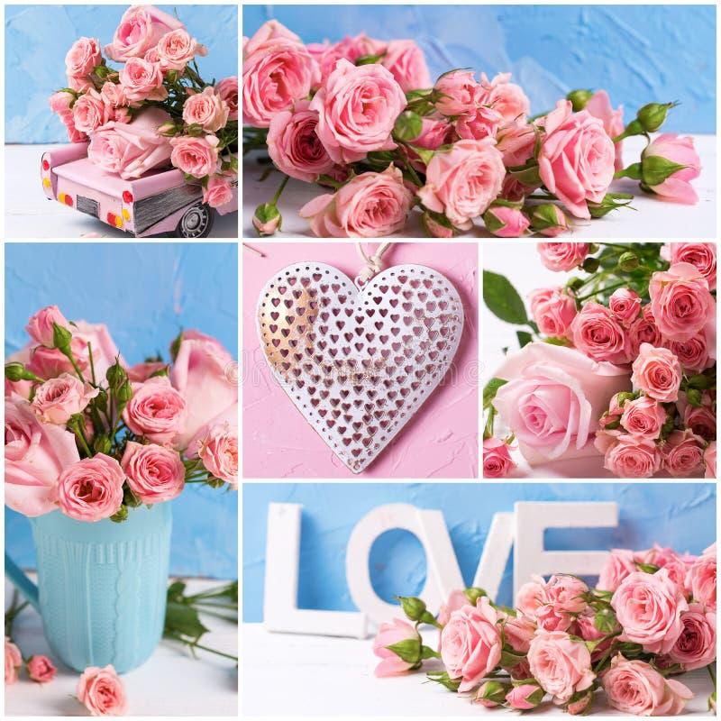 Collage des photos romantiques avec les fleurs roses de roses sur le textur photo stock