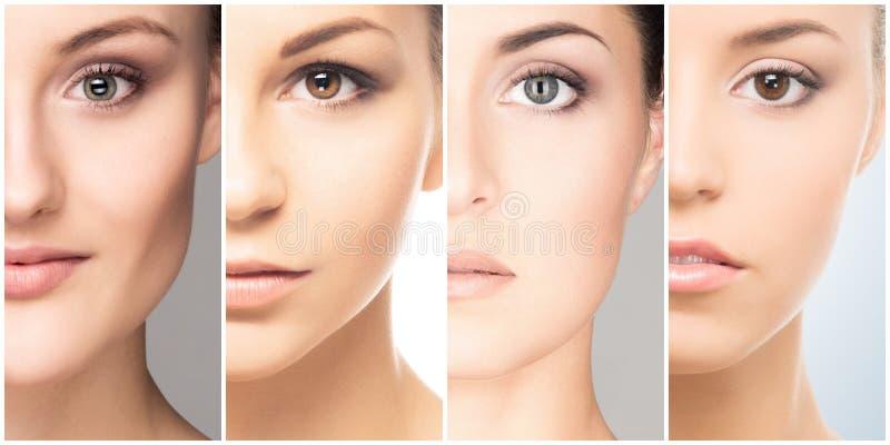 Collage des portraits femelles Visages sains des jeunes femmes Station thermale, levage de visage, concept de chirurgie plastique photographie stock libre de droits