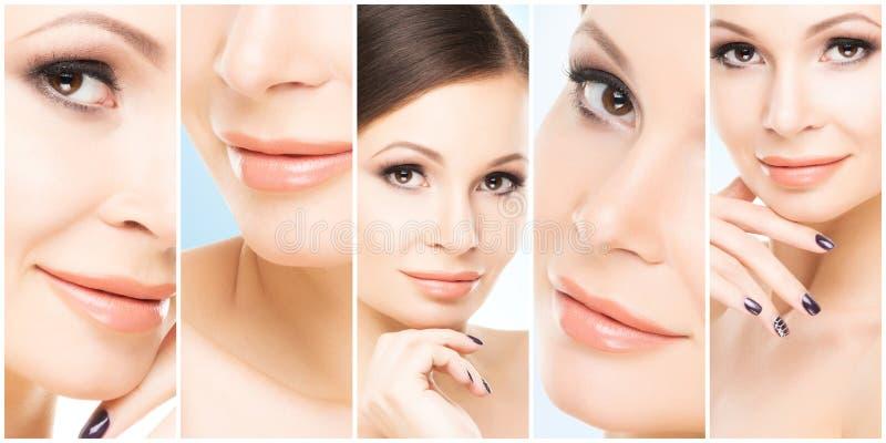 Collage des portraits femelles Visages sains des jeunes femmes Station thermale, levage de visage, concept de chirurgie plastique image libre de droits