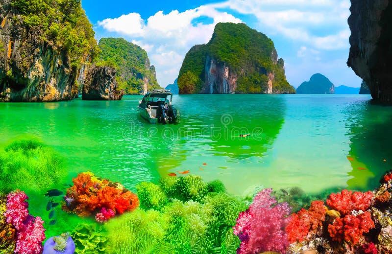 Collage des Unterwasserkorallenriffs und der Oberfläche mit grüner Insel auf dem Hintergrund stockfotos
