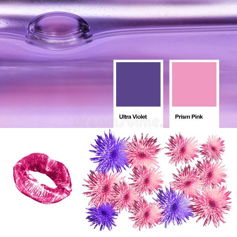 Collage di colore d'avanguardia dell'anno 2018 ultravioletto, alcoolici affini delle foto con il rosa del prisma Fiori floreali d immagine stock libera da diritti