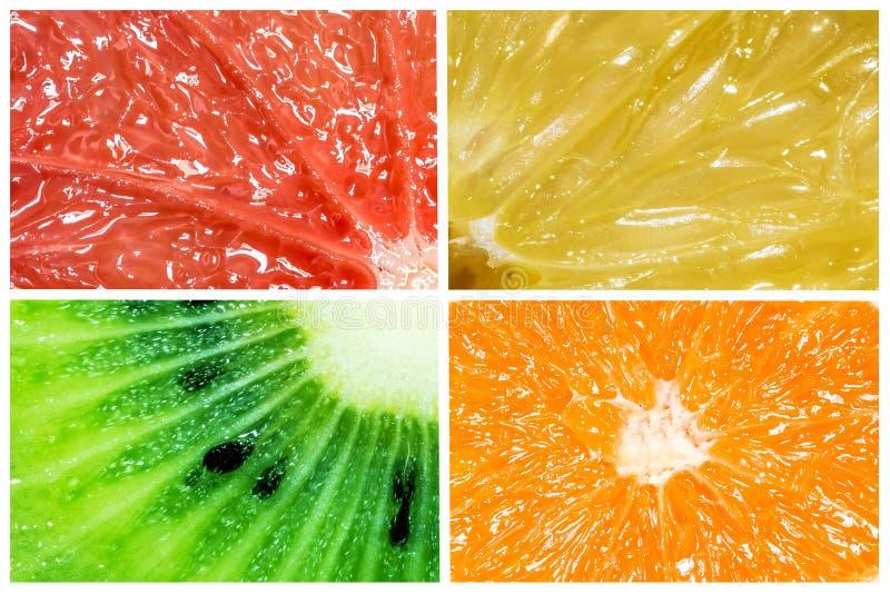 Collage di macro primo piano degli agrumi arancia, del limone, del pompelmo e del kiwi isolato su fondo bianco fotografia stock