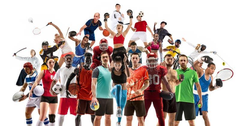 Collage di sport circa gli atleti femminili o i giocatori Il tennis, funzionamento, volano, pallavolo fotografie stock