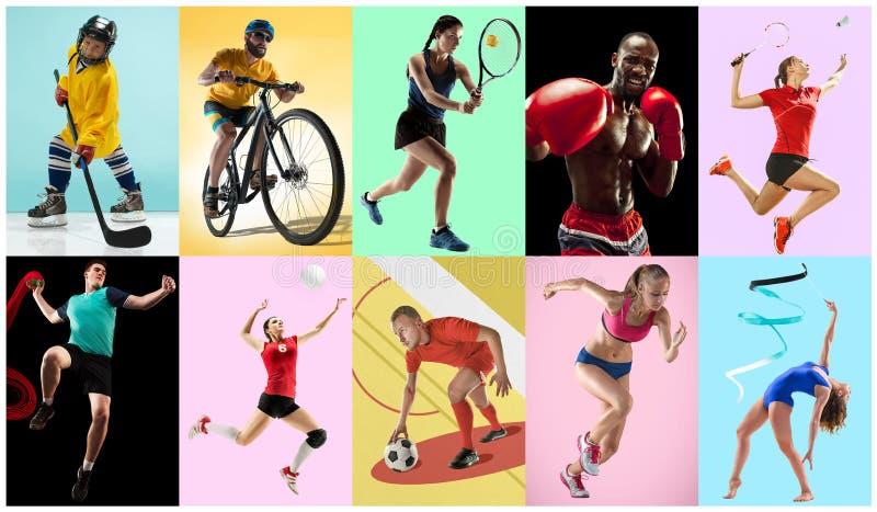 Collage di sport circa gli atleti o i giocatori Il tennis, funzionamento, volano, ginnastica ritmica, pallavolo immagine stock