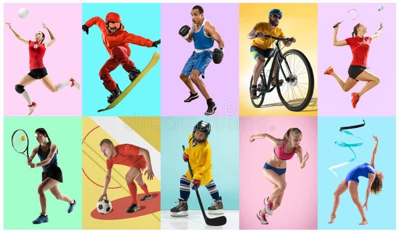 Collage di sport circa gli atleti o i giocatori Il tennis, funzionamento, volano, ginnastica ritmica, pallavolo fotografia stock libera da diritti