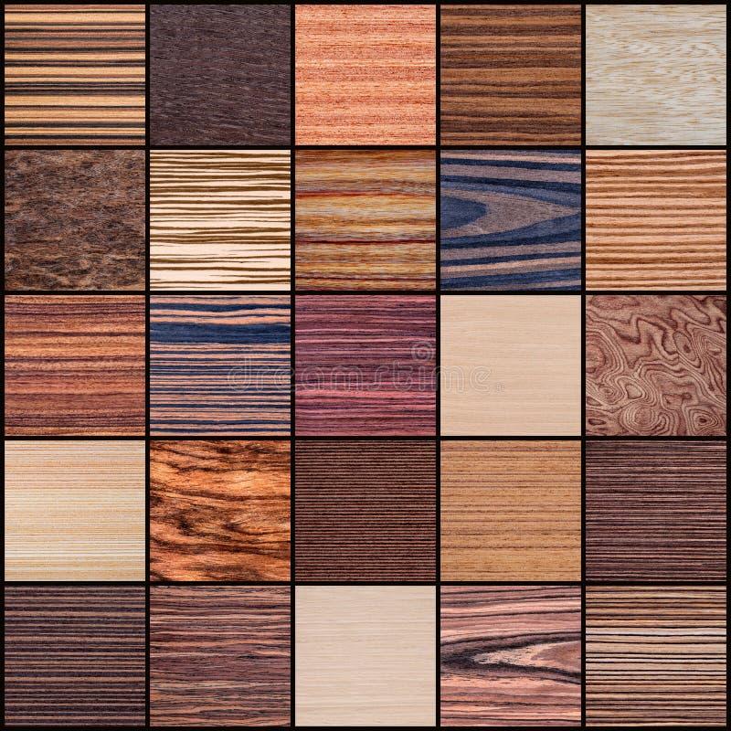 Collage di struttura di legno fotografia stock