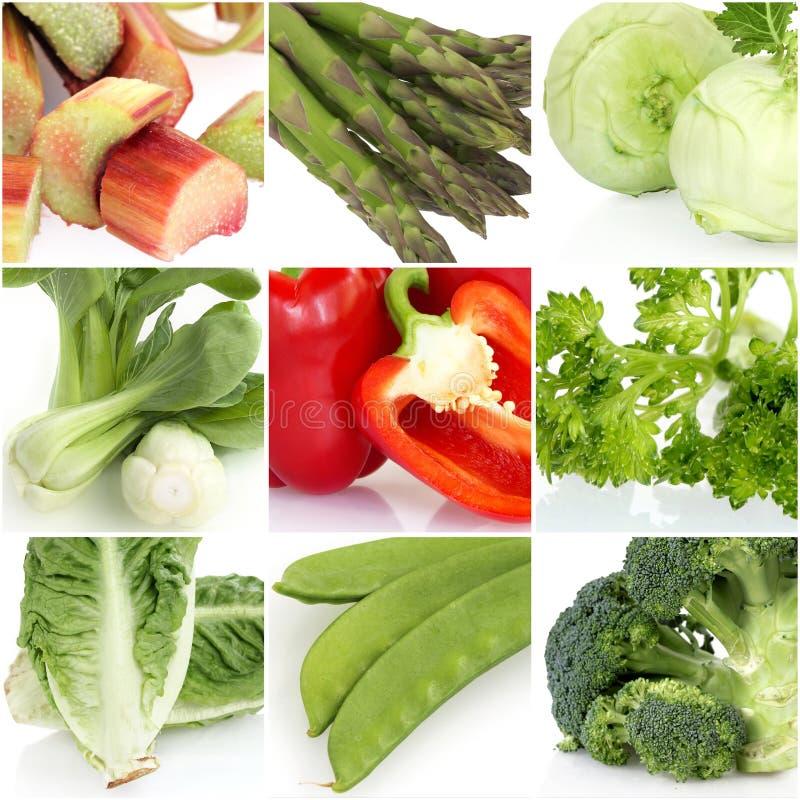 Collage för ny grönsak royaltyfri fotografi