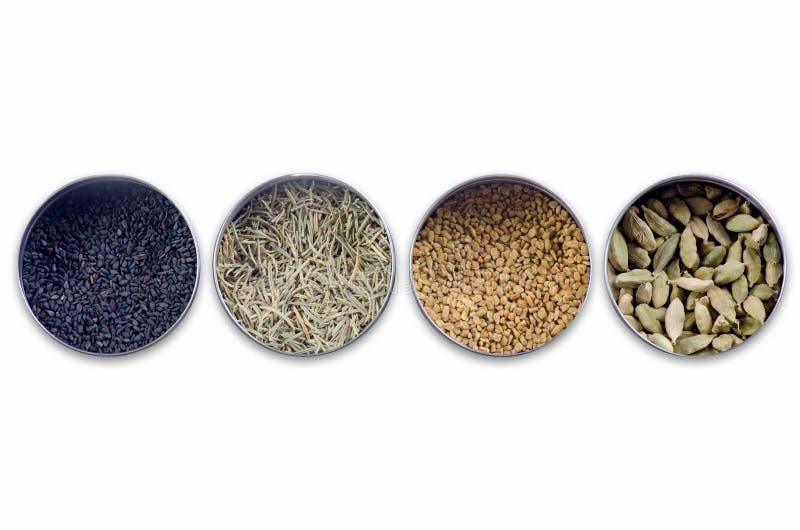 Collage för Rosemary Sesame svartspiskummin arkivbild