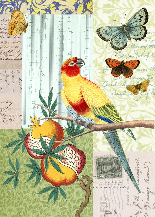 Collage för tappningfågel- och fjärilsvykort vektor illustrationer