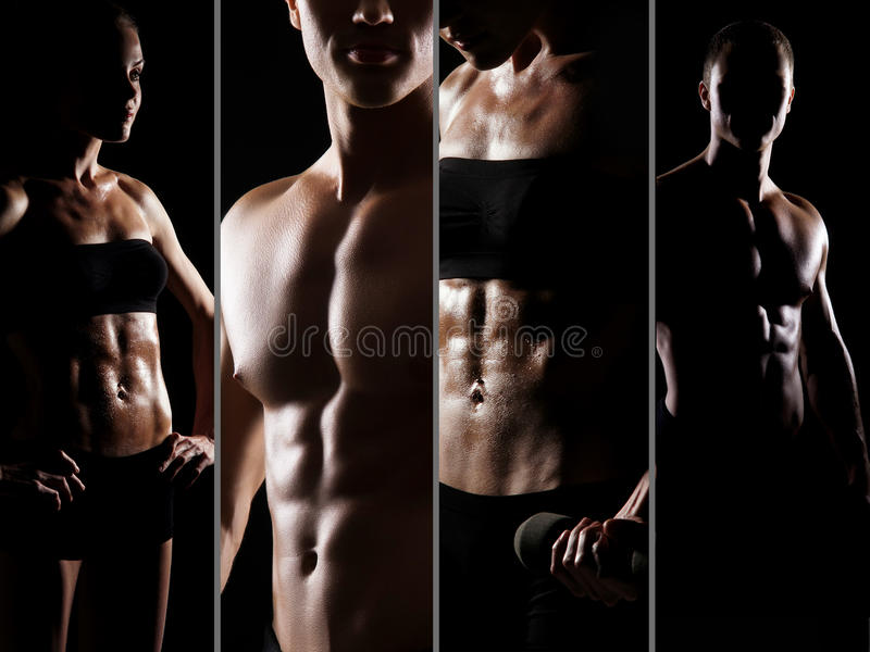 Collage of fit and male and female bodies stock photography