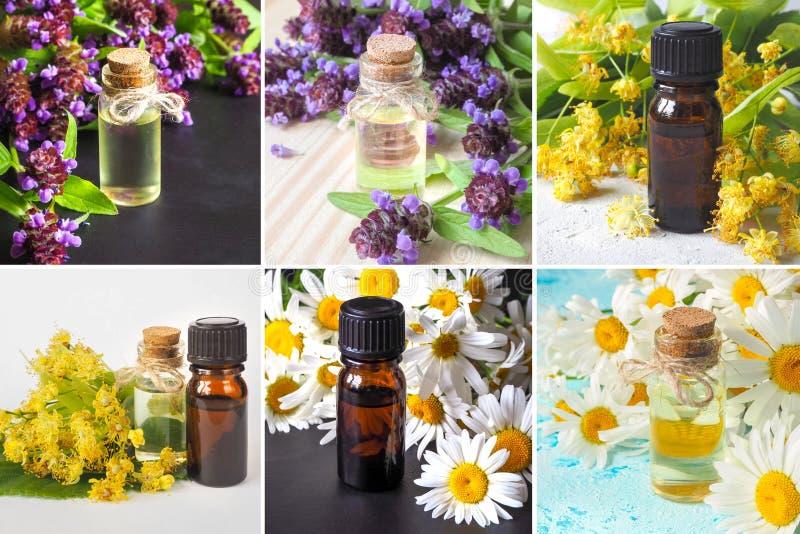 Collage från olika bilder av naturliga oljor för avkoppling och medicin fotografering för bildbyråer