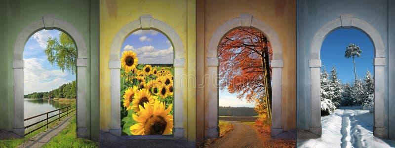 Collage fyra säsonger - landskap arkivbild